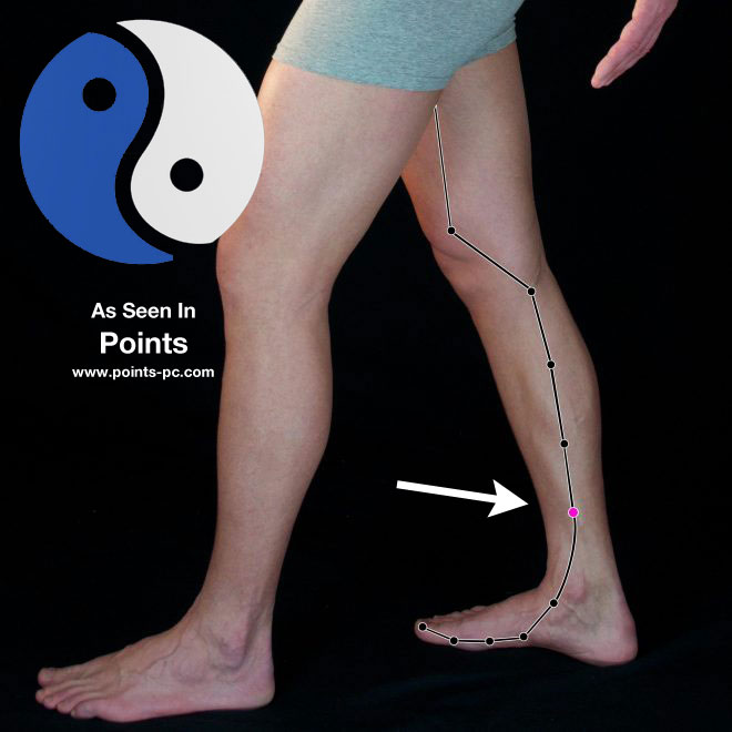 Acupuncture Point: Spleen 6